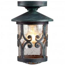 Уличный потолочный светильник Arte Lamp PERSIA A1453PF-1BG