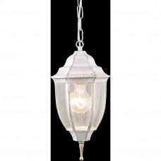 Уличный подвесной Arte Lamp PEGASUS A3151SO-1WG