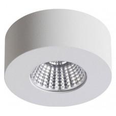 Накладной светильник Odeon Light Bene 4282/7СL